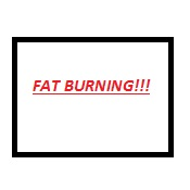 The Best Fat Burning Pills